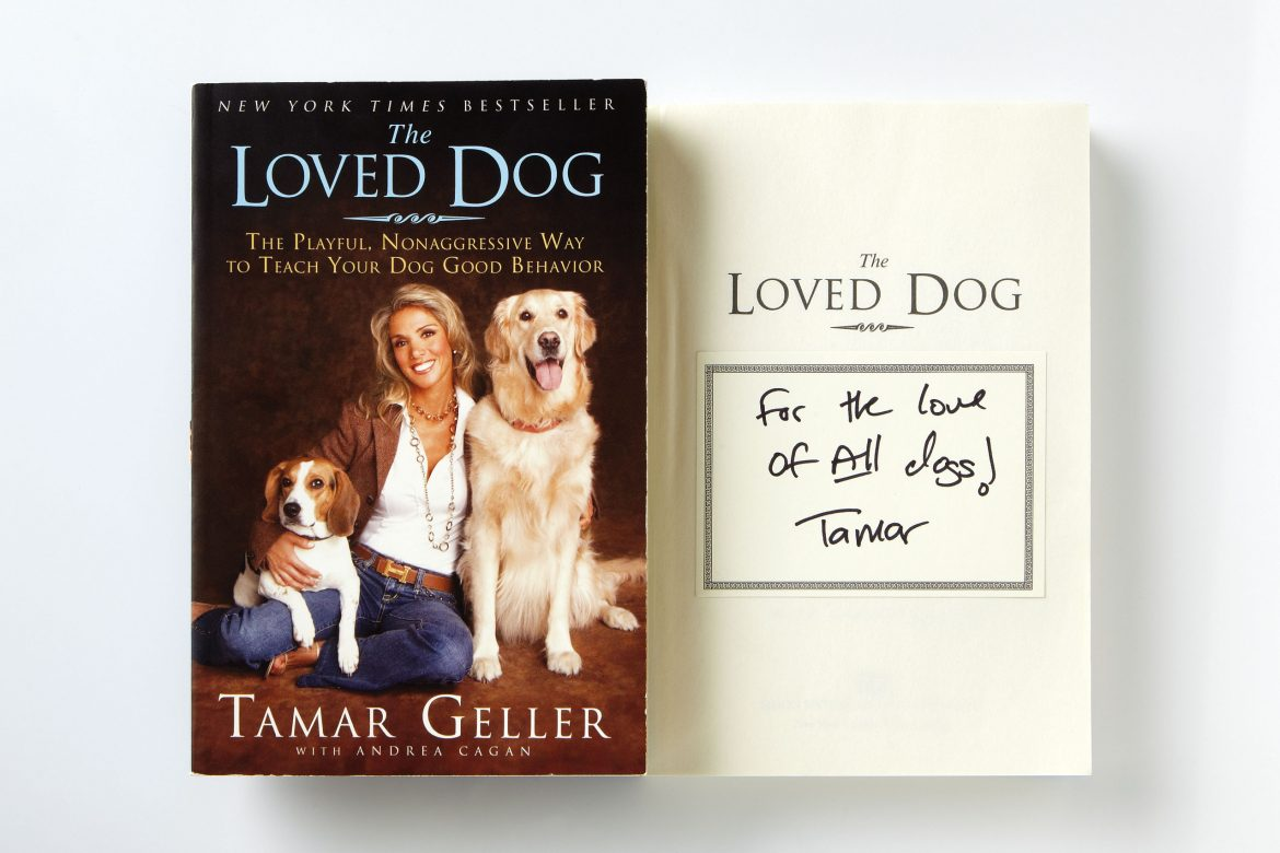 tamar book, the loved dog